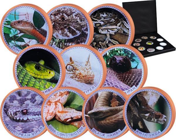 10 x 2 Cents Gibraltar Jahr der Schlange div. Jahre prägefrisch