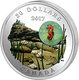 20 Dollars Kanada 2017 Under the sea – Seepferdchen